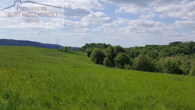 Działka na sprzedaż, Lutcza, 46000 m²   Morizon.pl   4722