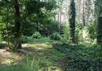 Działka na sprzedaż, Przyrownica, 41645 m² | Morizon.pl | 3270 nr2