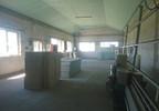 Lokal użytkowy na sprzedaż, Sójki, 260 m²   Morizon.pl   6834 nr12