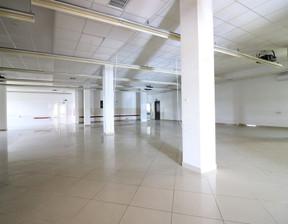 Lokal użytkowy do wynajęcia, Ostrów, 497 m²