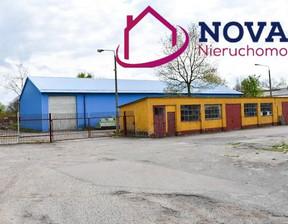 Magazyn, hala do wynajęcia, Ostróda Grunwaldzka, 560 m²