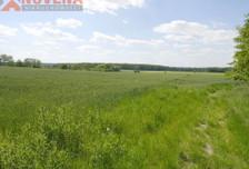 Działka na sprzedaż, Wilkowa Wilkowa - działka rolna, 14000 m²