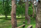 Działka na sprzedaż, Strachów, 32100 m²   Morizon.pl   4060 nr16