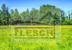 Morizon WP ogłoszenia | Działka na sprzedaż, Radonie, 5000 m² | 0581