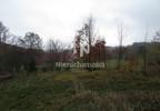 Działka na sprzedaż, Nowe Bogaczowice, 3200 m² | Morizon.pl | 0333 nr2