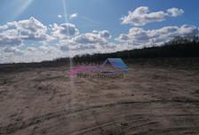 Działka na sprzedaż, Żółwin, 46050 m²