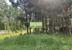 Dom na sprzedaż, Milanówek, 150 m²   Morizon.pl   6281 nr6