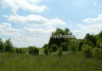 Działka na sprzedaż, Bukwałd, 8771 m²   Morizon.pl   7645 nr5