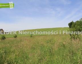 Działka na sprzedaż, Nowa Wieś Lęborska Witosa, 25800 m²