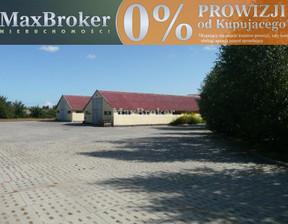 Działka na sprzedaż, Pruszcz Gdański, 9586 m²