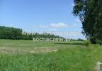 Działka na sprzedaż, Witoldów, 3000 m² | Morizon.pl | 4353 nr3