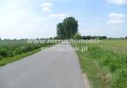 Działka na sprzedaż, Witoldów, 3000 m² | Morizon.pl | 4353 nr2