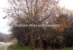 Morizon WP ogłoszenia | Działka na sprzedaż, Dąbrowa, 3500 m² | 6854