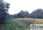 Działka na sprzedaż, Puchały, 2300 m²   Morizon.pl   8847 nr7