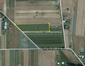 Działka na sprzedaż, Kalisz, 20204 m²