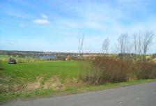 Działka na sprzedaż, Roztropice, 45324 m²
