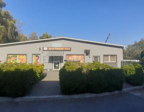 Magazyn, hala na sprzedaż, Bytom Karb, 1200 m²