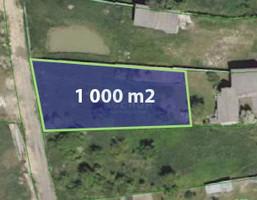Morizon WP ogłoszenia   Działka na sprzedaż, Rzerzęczyce Skrzydlowska, 1000 m²   2818