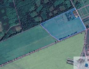 Działka na sprzedaż, Bojszów, 116343 m²