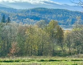 Działka na sprzedaż, Sosnówka, 3000 m²
