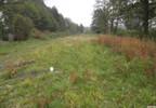 Działka na sprzedaż, Dobrzyniówka, 2700 m² | Morizon.pl | 3397 nr2