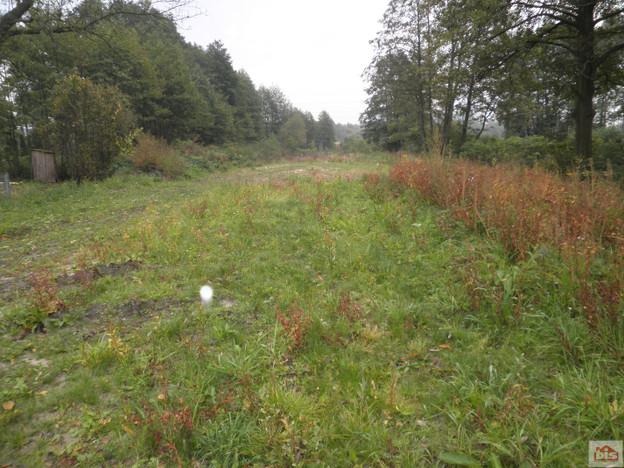 Działka na sprzedaż, Dobrzyniówka, 2700 m² | Morizon.pl | 3397