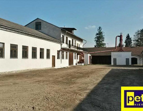 Fabryka, zakład do wynajęcia, Zagaje Smrokowskie, 1500 m²