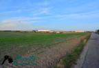 Działka na sprzedaż, Kostrzyn, 47500 m²   Morizon.pl   6309 nr8