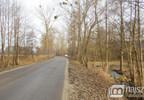 Działka na sprzedaż, Międzyzdroje, 7100 m²   Morizon.pl   2581 nr4