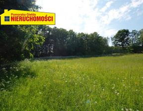 Działka na sprzedaż, Żelisławie, 8600 m²
