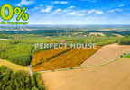 Działka na sprzedaż, Kopanka, 33031 m² | Morizon.pl | 8799 nr2