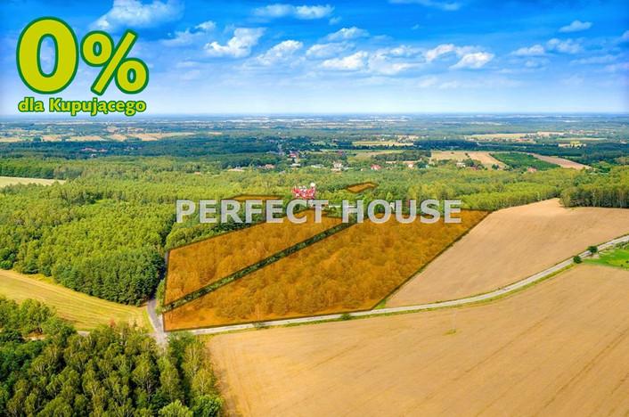 Działka na sprzedaż, Kopanka, 33031 m² | Morizon.pl | 8799