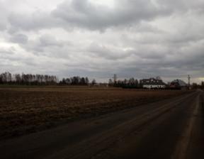 Działka na sprzedaż, Boryszew, 20000 m²