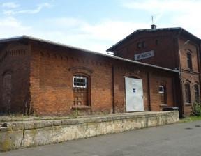 Magazyn, hala do wynajęcia, Niemodlin Dworcowa, 111 m²