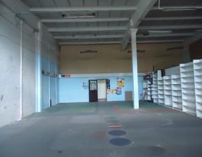 Lokal użytkowy do wynajęcia, Wrocław Robotnicza, 160 m²