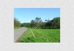 Morizon WP ogłoszenia | Działka na sprzedaż, Nadbrzeż, 3100 m² | 1740