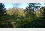 Morizon WP ogłoszenia | Działka na sprzedaż, Budy-Grzybek, 15851 m² | 0219