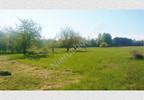 Działka na sprzedaż, Redlanka, 54740 m²   Morizon.pl   2194 nr9