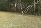 Działka na sprzedaż, Henryszew, 50000 m²   Morizon.pl   5466 nr4