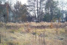 Działka na sprzedaż, Wielgolas Duchnowski, 3900 m²