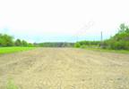 Działka na sprzedaż, Pęclin, 2750 m² | Morizon.pl | 4310 nr12