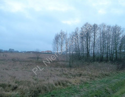 Morizon WP ogłoszenia | Działka na sprzedaż, Dziękowizna, 2000 m² | 3521