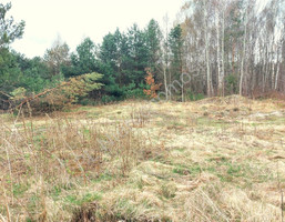 Morizon WP ogłoszenia | Działka na sprzedaż, Ludwinów, 1419 m² | 9672