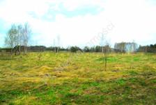 Działka na sprzedaż, Rudno, 5000 m²