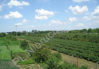 Działka na sprzedaż, Grójec, 23200 m² | Morizon.pl | 3983 nr6