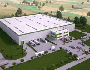 Działka na sprzedaż, Bieniewo-Parcela, 28900 m²