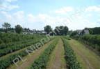 Działka na sprzedaż, Grójec, 23200 m² | Morizon.pl | 3983 nr12