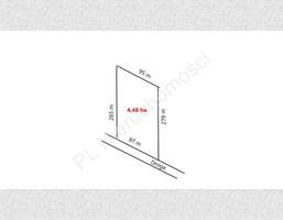 Morizon WP ogłoszenia | Działka na sprzedaż, Odrano-Wola, 44804 m² | 8422