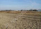 Działka na sprzedaż, Błonie, 6000 m² | Morizon.pl | 3978 nr5