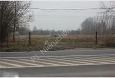 Działka na sprzedaż, Brwinów, 11854 m²